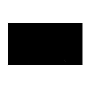 Logo giày Jordan